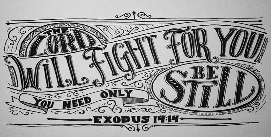lord-will-fight